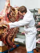 Butcher grading side of beef — Stockfoto