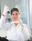 Female Scientist Filling Liquid Into Microplate — Stock Photo