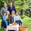 Multi Generation Family Enjoying Picnic In Park — Stock Photo #64123009