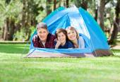 Family Relaxing In Tent At Park — Stock Photo