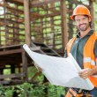 Happy Male Architect Holding Blueprint At Site — Stock Photo #70265173