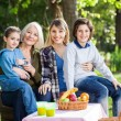Multi Generation Family Enjoying Picnic At Park — Stock Photo #71728953