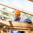 Confident Construction Worker Hammering Nail On Timber Frame — Stock Photo #71729033
