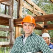 Smiling Male Construction Worker Carrying Ladder — Stock Photo #71729673