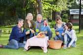 Family Enjoying Healthy Picnic In Park — 图库照片