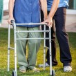 Caretaker Helping Senior Woman In Using Walking Frame — Stock Photo #80544906