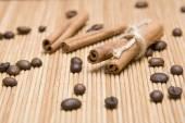 Spice cinnamon — Stock Photo