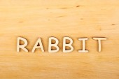 Rabbit text — Stock Photo