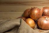Onion — Stock Photo