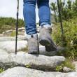 Hiking woman with trekking boots and sticks on the rocky trail — Stock Photo #61665529