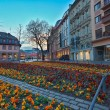 Flowerbed in european city center — Stock Photo #69715117