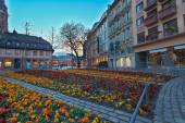 Flowerbed in european city center — ストック写真