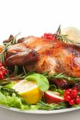 Roasted duck with vegetables — Stock Photo