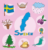 The set of  national profile of the geographic maps of the sweden — Stock Vector
