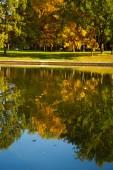 Golden autumn on the lake. — Stock Photo