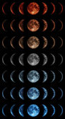 Phases of the moon — Stock Photo