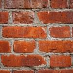 Red brick wall closeup — Stock Photo #57378723