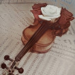 Old violin with musical notes and rose — Stock Photo #70731143