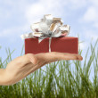 Gift box — Stock Photo #61971307