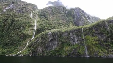 View on Milford Sound Fjord — Stock Video