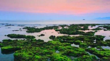 Sunrise over the sea — Stock Video