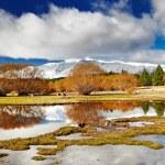 Lake Tekapo, New Zealand — Stock Photo #54985765