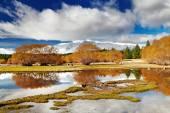 Lake tekapo, nieuw-zeeland — Stockfoto