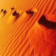 Footprints on sand dune — Stock Photo #61534957
