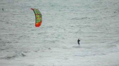 Kitesurfers on sea — Vídeo Stock