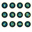 Zodiac icons — Stock Vector #61607237