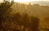 Autumn landscape in Tuscany  — Stock Photo