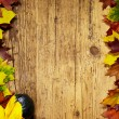 Autumn Fall background — Stock Photo #55744501