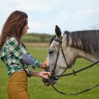 Woman with a white horse — Stock Photo #57267645