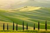Landscape of Tuscany region — Stock Photo