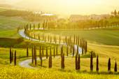 Landscape of Tuscany region — Stockfoto