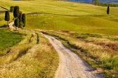 Countryside, San Quirico d'Orcia — Stock Photo