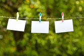 Blank pieces of paper hang on clothesline — Stock Photo