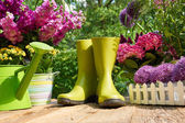 Gardening tools and flowers  on the terrace — Stock Photo