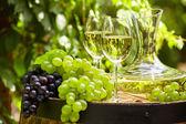 Bicchieri di vino bianco — Foto Stock