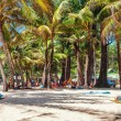 Tourists sunbathing on the sand of a tropical beach in the shade — Stock Photo #59758515