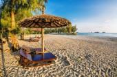On the sand tropical beach — Stock Photo
