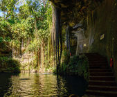 Cenote, natural pit in Mexico — Stock Photo