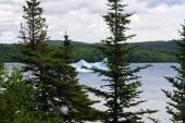 Melting iceberg near Newfoundland — Stock Photo