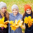 Children at autumn — Stock Photo #52395707