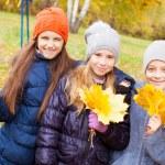 Children at autumn — Stock Photo #53660125