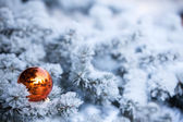 Christmas winter background — Foto Stock