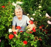 Man caring for roses in the garden — Stock Photo
