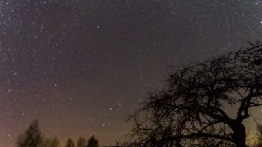 Time lapse at night with pole star — Stock Video