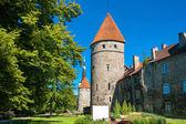 Old Tallinn. Estonia — Stock Photo