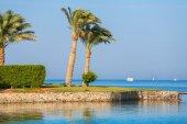 Pobřeží rudého moře. egypt — Stock fotografie